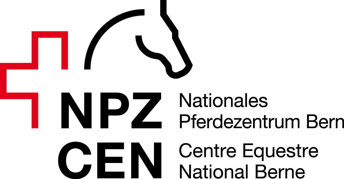cargotec osake hinta husqvarna poljettava ompelukone hinta